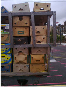 Smiling Cardboard Boxes